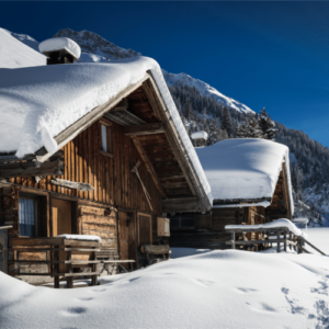 mountain resort ctr optimization